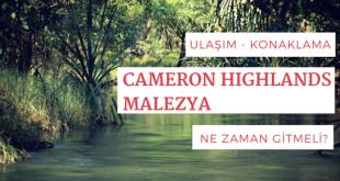 Cameron Highlands Gezi Rehberi | Malezya